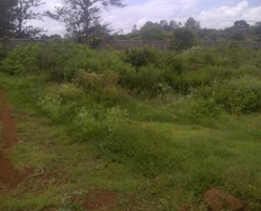 Runda Mhasibu corner plot 5973103