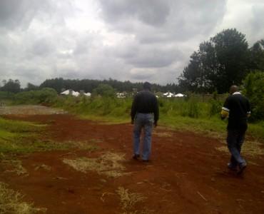 Runda Mhasibu showing other developments
