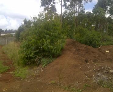 runda Mhasibu 597323.corner plot