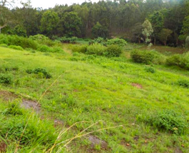 Thika-greens-1-4-acre-plot-for-sale (4)