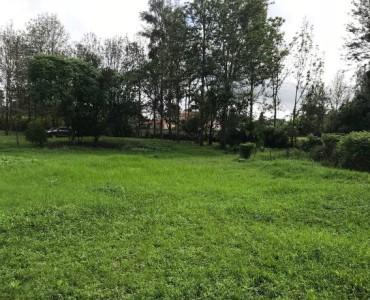 Ten Acre plots for sale in Karen