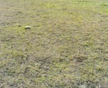 29-acre Land for sale in Kajiado Kenya