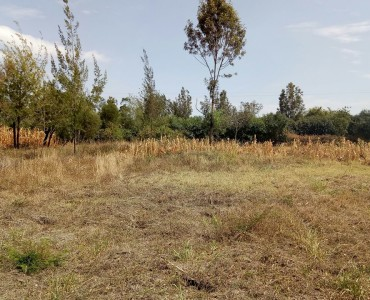 1/8 Acre land for sale in Ngong Matasia