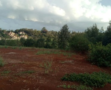 Land for Sale in Karen
