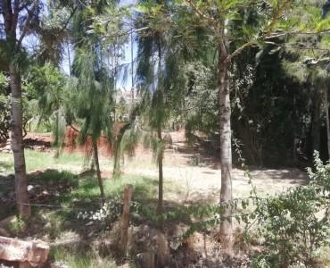 Half acre in Loresho (3)