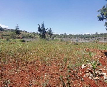Half acre in Loresho (5)