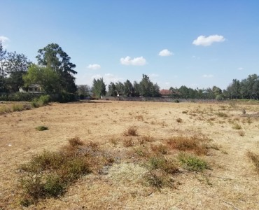 5 Acres subdivided into half acres, Karen (3)