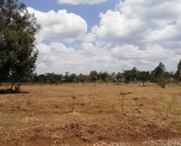 Property for sale off Forest Edge Road - Bomas-Karen area (10)