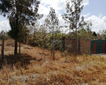 Property for sale off Forest Edge Road - Bomas-Karen area (11)