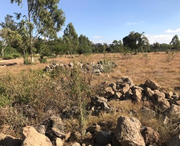 Property for sale off Forest Edge Road - Bomas-Karen area (2)