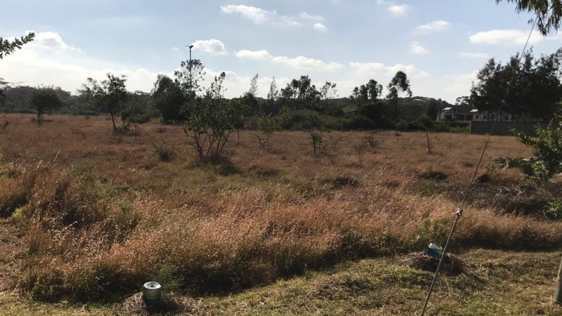 Property for sale off Forest Edge Road - Bomas-Karen area (3)