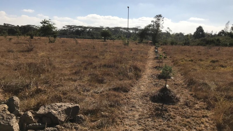 Property for sale off Forest Edge Road - Bomas-Karen area (4)