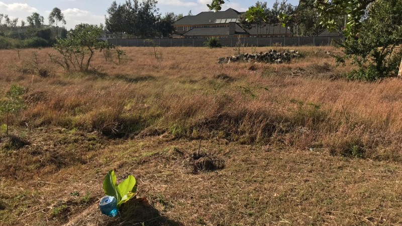 Property for sale off Forest Edge Road - Bomas-Karen area (5)