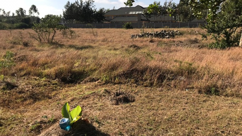 Property for sale off Forest Edge Road - Bomas-Karen area (6)