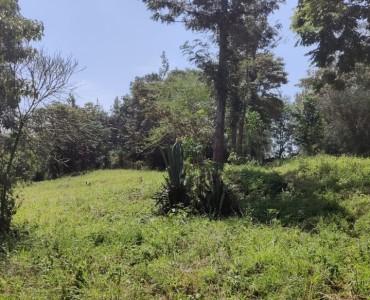 0.7 Acres, Runda (3)