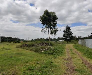 12 Acre, Karen off Mukoyeti Rd (2)