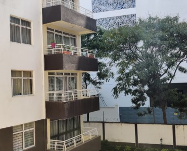 3 Bedroom Apartment with Dsq To Let in Lantana (6)