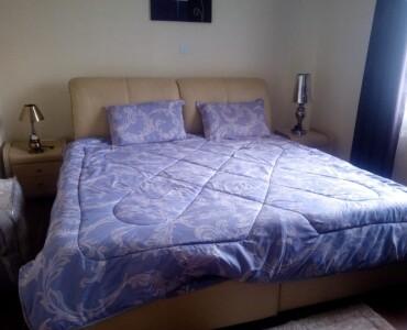 Fully Furnished 2 Bedroom Guest House, Karen (11)