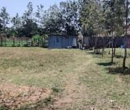 Half Acre Karemn (2)